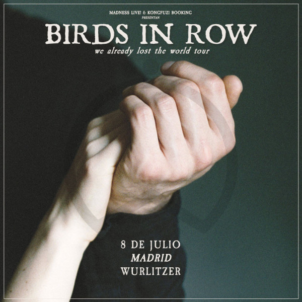 Birds in Row (Madrid)